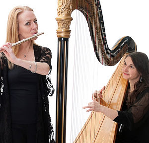 Harp and flute musicians